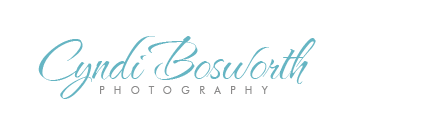 Cyndi Bosworth Photography